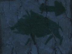 Szlak Leśnej Zwierzyny
