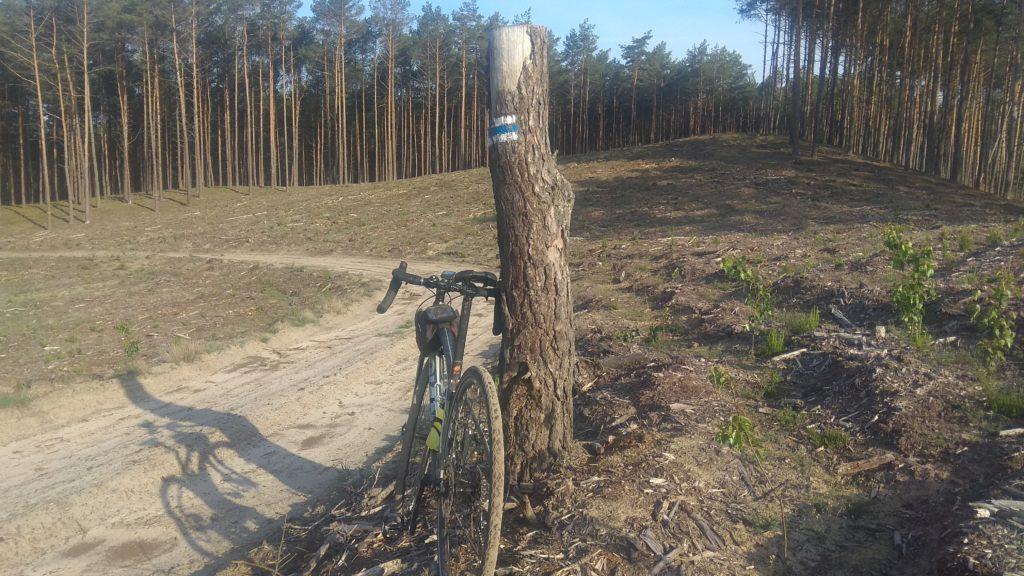 Sieraków - Miały : Szlak niebieski