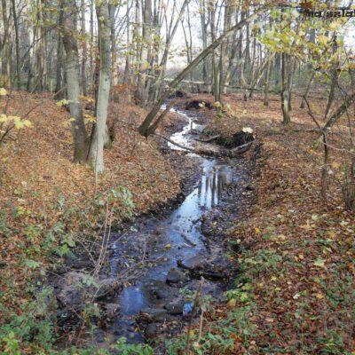 Potok Kwielcki